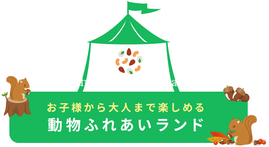 お子様から大人まで楽しめる動物ふれあいランド Machida Squirrel Garden.