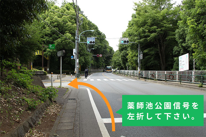 薬師池公園信号を左折して下さい。
